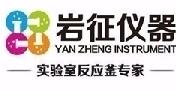 上海岩征/YAN ZHENG INSTRUMENT