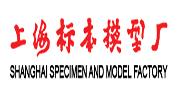 (上海)上海标本模型
