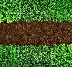 土壤重金属有效态分析应被重视