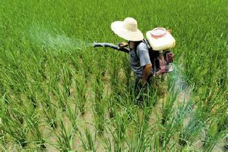 我國化肥農藥使用量零增長提前三年實現
