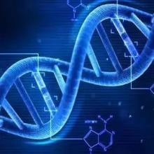 打破垄断 我国首个NGS肿瘤多基因检测试剂盒上市
