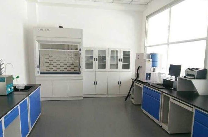 电热鼓风干燥箱用途和应用特点