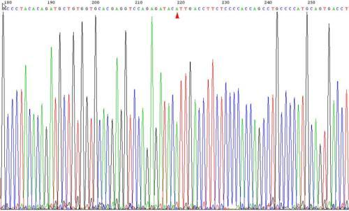 探访世界著名基因测序中心