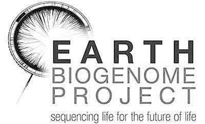 地球生物基因组计划正式启动