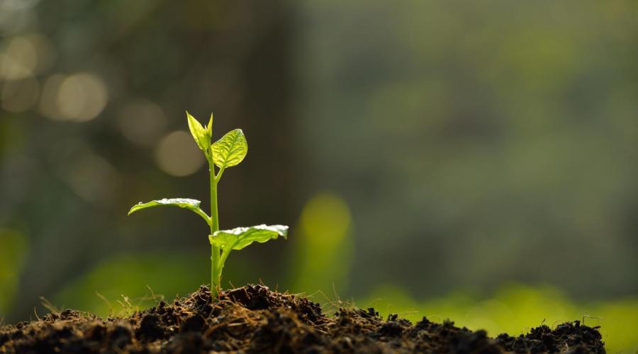 浙江杭州《土壤污染重点监管单位管理办法》意见稿发布