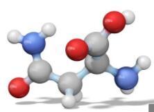氨基酸用户培训邀请函