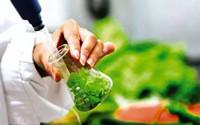 滕州建立食品快检室 免费为市民检测果蔬是否农药超标