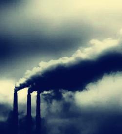 生态系统损害检测鉴定 两部联合颁发《执业分类规定》