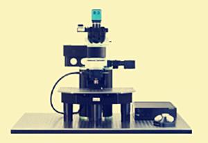 微型双光子显微镜可获取大脑成像图 有望用于医疗领域