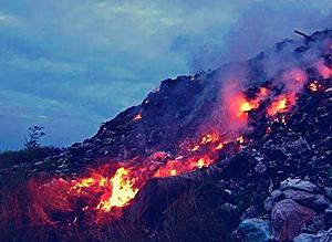 海南生態廳發布《生活垃圾焚燒污染控制標準》征求意見稿