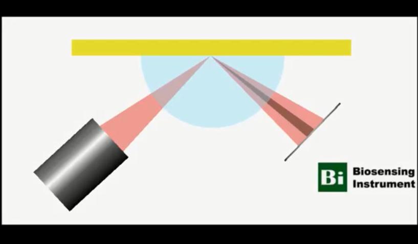 表面等離子體共振SPR的工作原理介紹