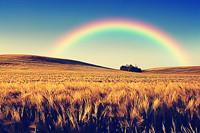 新疆昭蘇氣象探測儀放大招 開啟彩虹觀測與預報模式