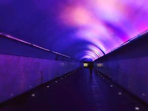 激光功率计 通信用光波 紫外分析仪 三项规范通过审定