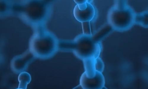 迪必尔生物-周老师讲解《如何进行发酵实验系列3》