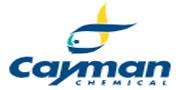 美国Cayman/Cayman