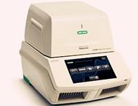 山东市监局发布《伪狂犬病净化技术规范 荧光RT-PCR检测法》