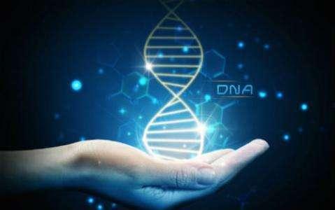 基因分析技术助力遗传病的诊断与防控培训讲座
