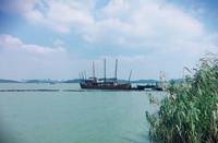 江蘇生態環境廳發布《太湖流域果園面源污染綜合防控技術規范》