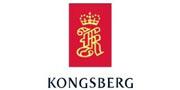 挪威Kongsberg /Kongsberg
