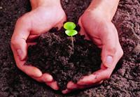 《土壤和沉积物 8种酰胺类农药的测定气相色谱-质谱法》
