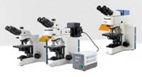 鬼成像结合超分辨荧光显微镜有望捕捉快速变化动力学过程