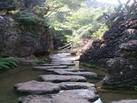 江蘇省生態環境廳發布《污染地塊修復工程環境監理規范》