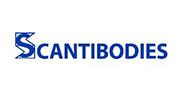 美国Scantibodies