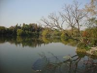 生态环境部发布《水质 草甘膦的测定高效液相色谱法》