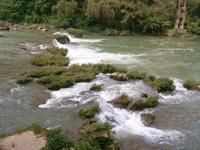 浙江市监局发布《水质五参数在线监测仪检定规程》