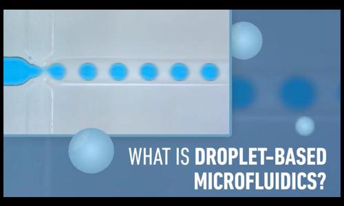 液滴微流控基础:短视频介绍
