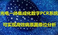 """""""光�一�w集成化芯片PCR"""" 可���F高效病原在所有人菌原位分析"""