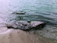 生態部印發《生態環境損害鑒定評估技術指南 地表水與沉積物》