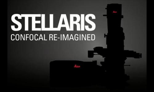 Leica徕卡全新一代共聚焦显微镜STELLARIS
