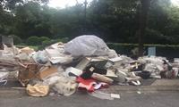 《倾倒填埋和转移固体废物类环境事件快速监测技术规程》征求意见稿