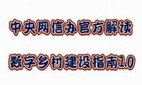 中央网信办官方解读——《数字乡村建设指南1.0》