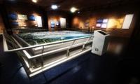安徽省自然科学基金——能源互联网联合基金2021年度拟立项项目