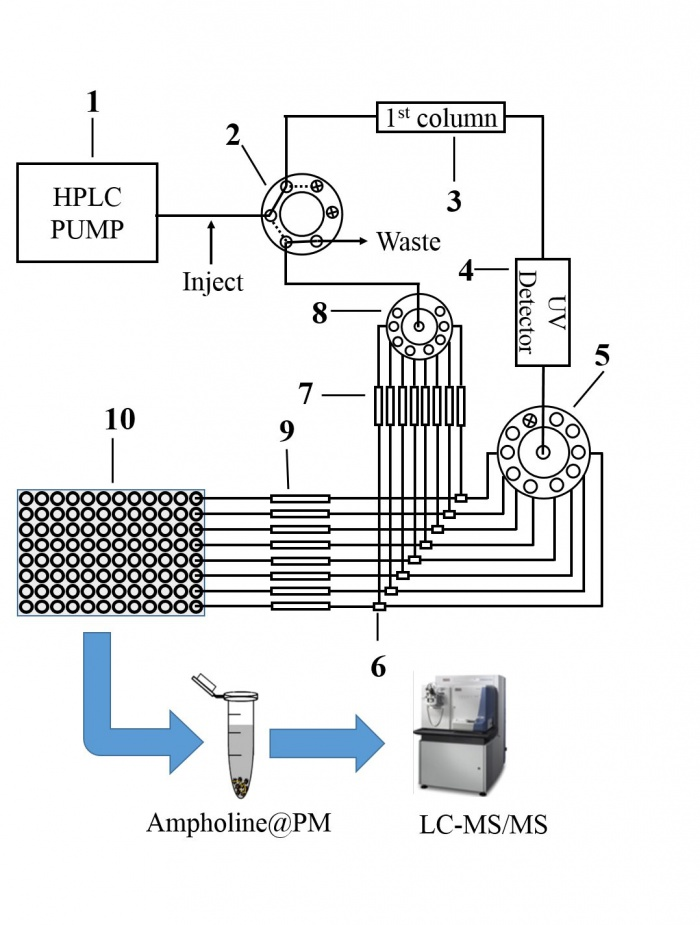 离柱;(4)紫外检测器;(5)