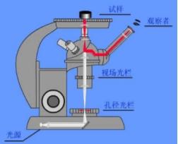 金相显微镜光路图