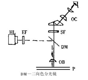 落射式倒置荧光显微镜的原理