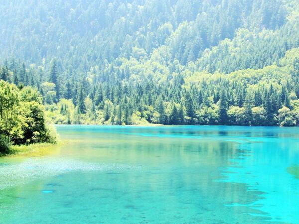 地表水环境质量标准内容.jpg