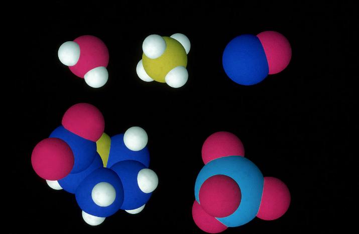 氨基酸是什么,氨基酸测定分子图片