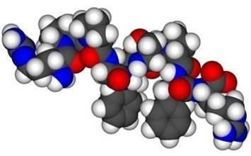 多肽合成.jpg