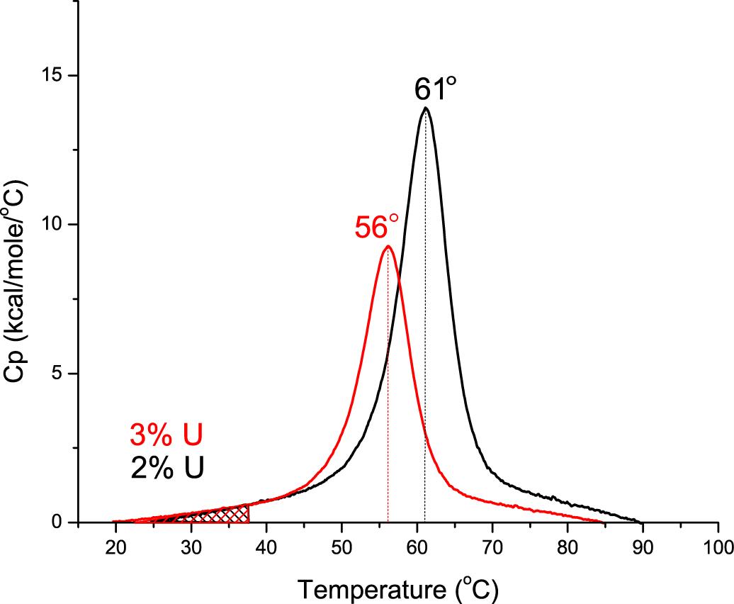 【热点应用】揭秘蛋白质的热稳定性!