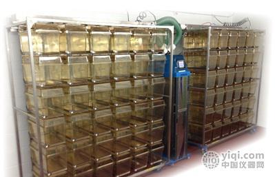 美国ad公司ivc实验动物独立通风笼具系统