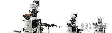 尼康(Nikon) Ti 倒置荧光显微镜