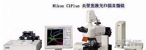 尼康激光共聚焦显微镜