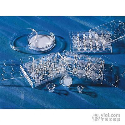 bethyl抗体和ELISA试剂盒