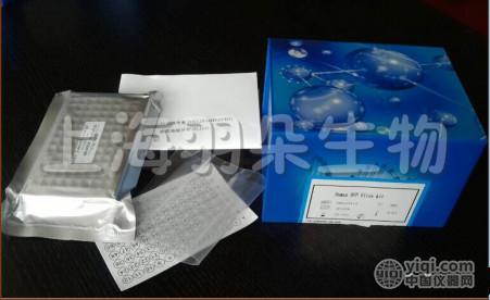 小鼠脱氢表雄酮硫酸酯(DHEA-S)ELISA试剂盒