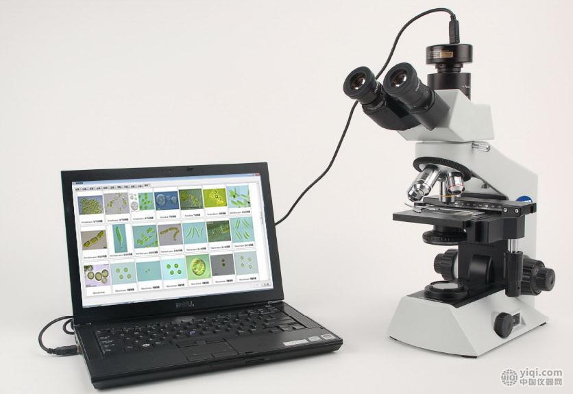 AlgaeC浮游生物计数智能鉴定系统藻类鉴定