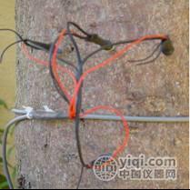 插针式茎流传感器SF-L